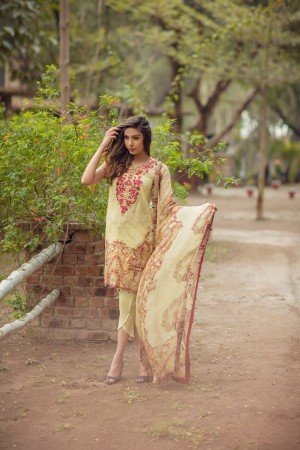 Noor By Sadia Asad Luxury Lawn Collection' auric carcass